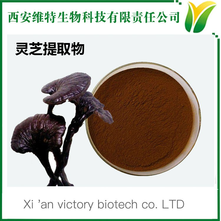 西安维特生物|SC厂家|专业植物提取物|中药提取物